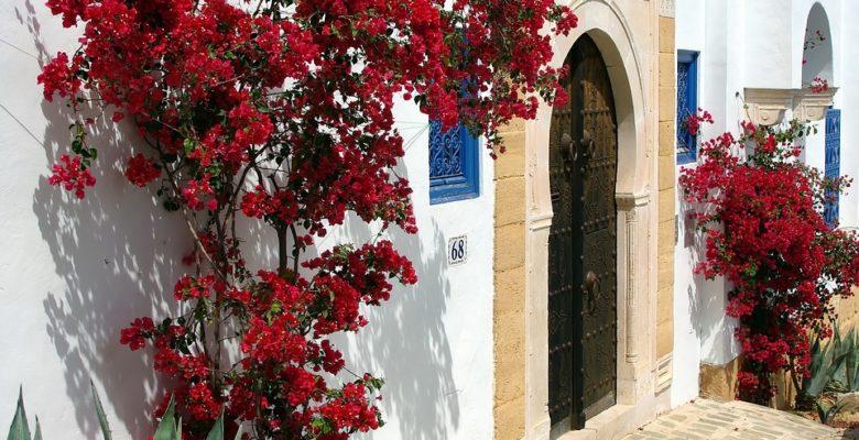 Tunezja zabytki zwiedzanie